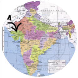 Experiencia de Manu en la provincia de Gujarat (Verano 2015). ETAPA 1